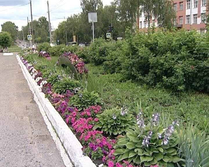 В Кирове стартовал конкурс «Цветущий город»