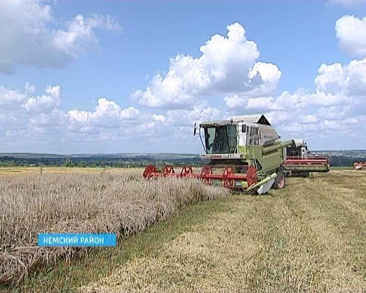 В Кировской области заготовка кормов ведется высокими темпами