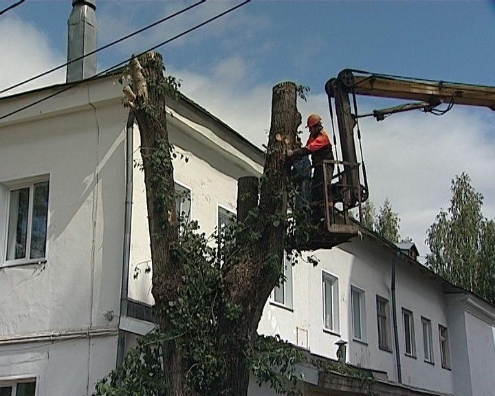Спиливают деревья