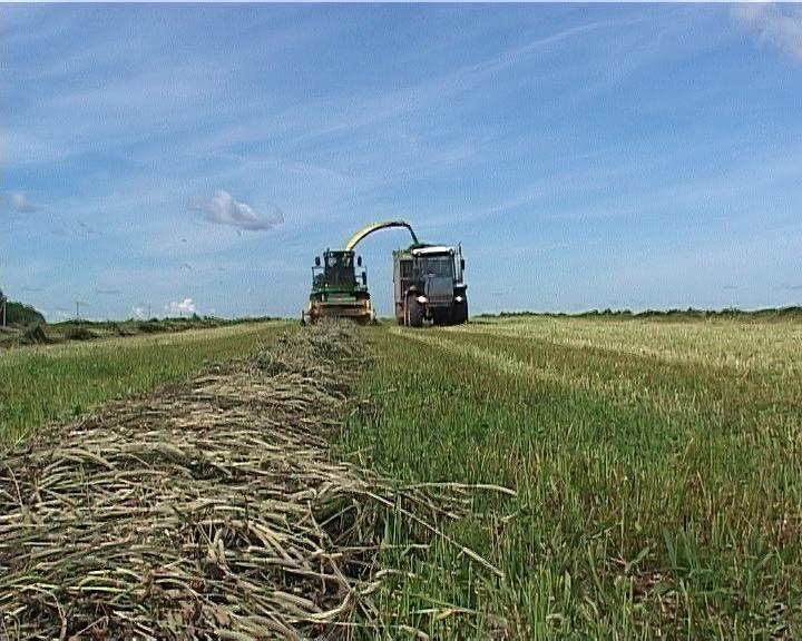 В Кировской области началась уборка урожая.