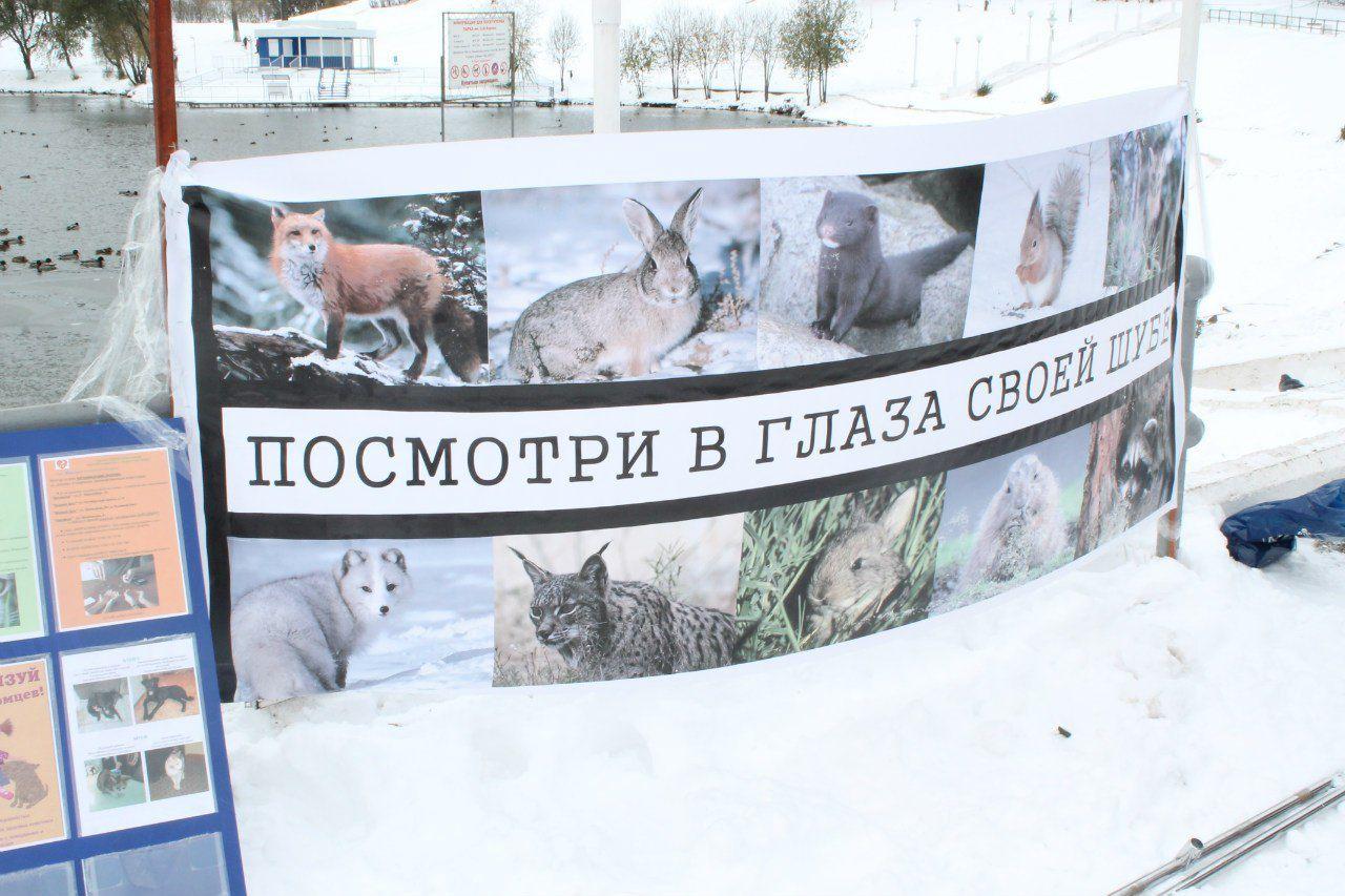 Кировчан попросят отказаться от животного меха