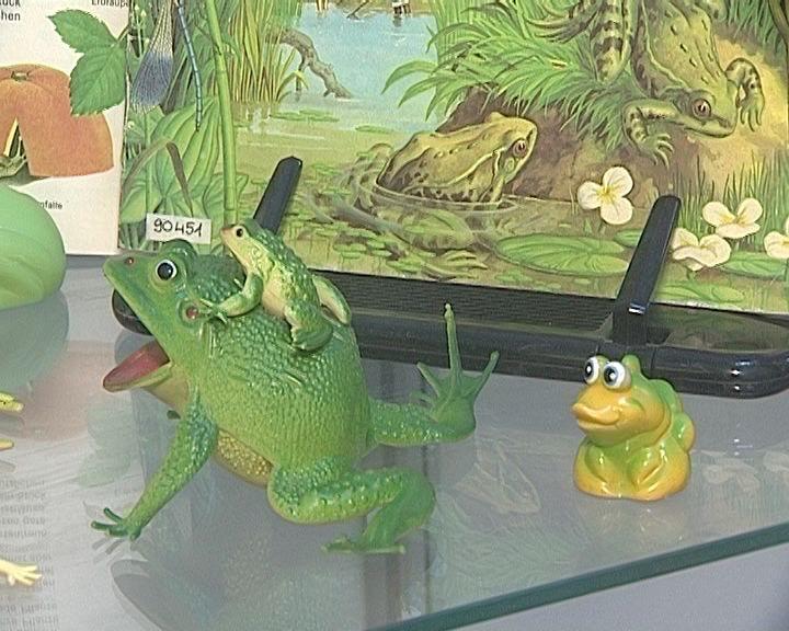 В Герценке открылась оригинальная выставка с главной героиней - лягушкой