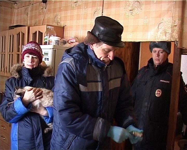 ВКирове лиса напала нашкольника: следователи начали проверку