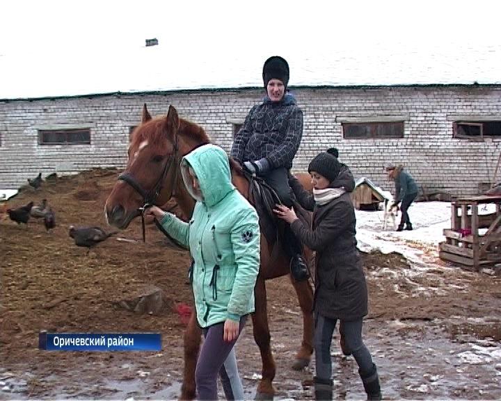 В Кировской области появилась ферма, на которой живут лошади-врачеватели
