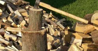 В Кировской области снизят ставки платы за лес для отопления жилья.