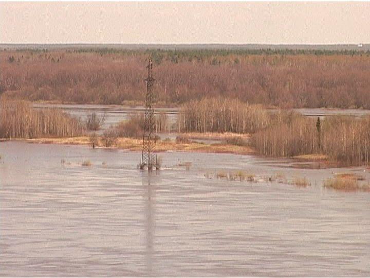 За сутки уровень воды в реке Вятке поднялся на 13 сантиметров.