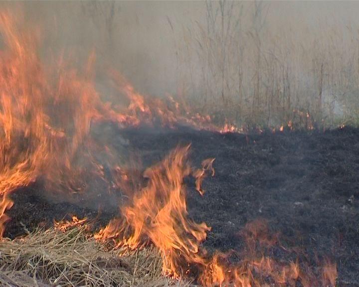 В регионе начался сезон «горящей травы»
