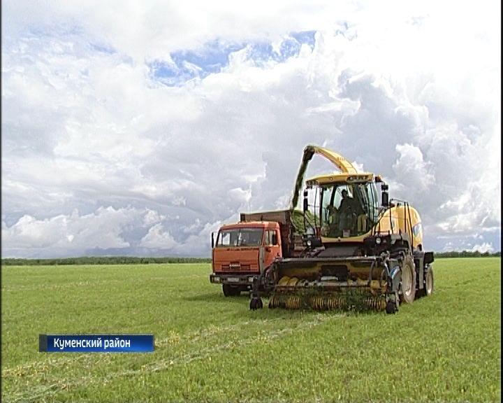 В Кировской области началась уборка кормовых трав