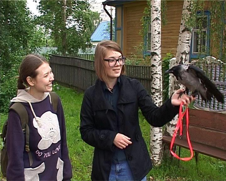 В селе Русском появится Центр реабилитации для птиц