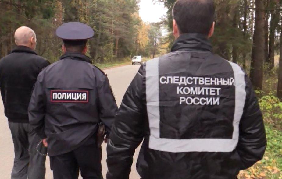 В Сосновке случайная встреча в лесу завершилась убийством