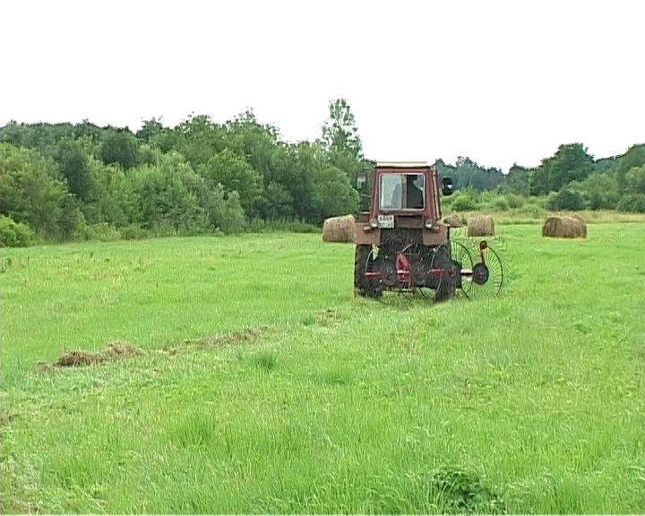 Россельхознадзор ищет владельцев заброшенных участков земли