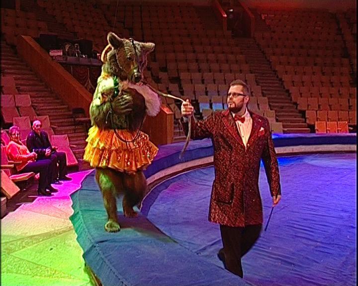 C 16 сентября в кировском цирке знаменитая династия цирковых артистов Филатовых