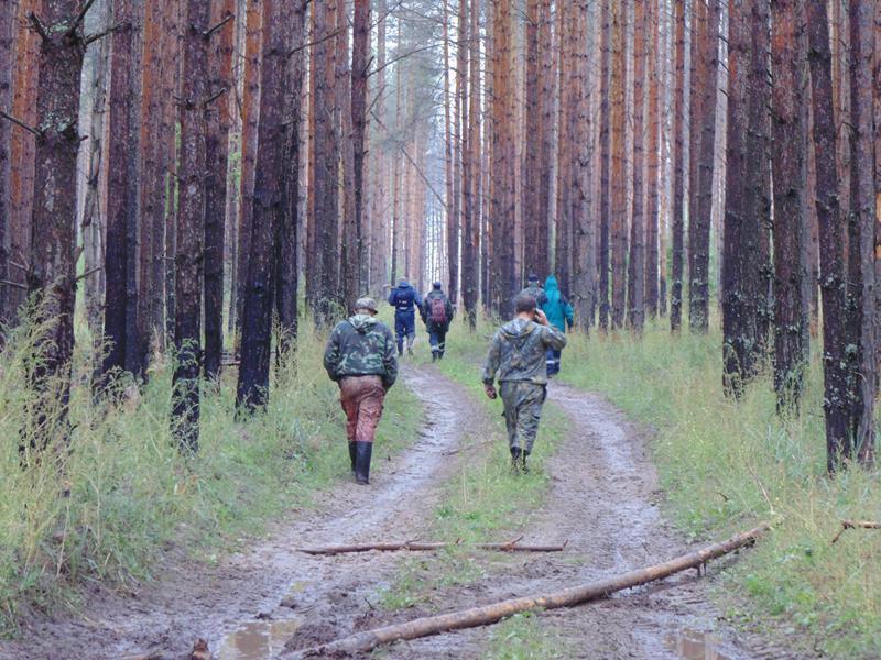 В Слободском районе нашли 85-летнюю пенсионерку, которая четыре дня блуждала в лесу.