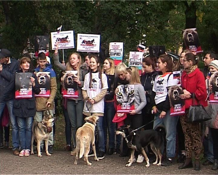 В Кирове прошел митинг в защиту животных