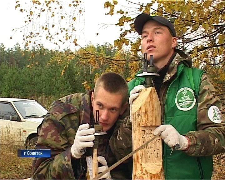 Открытие «Лесного многоборья» в Советске