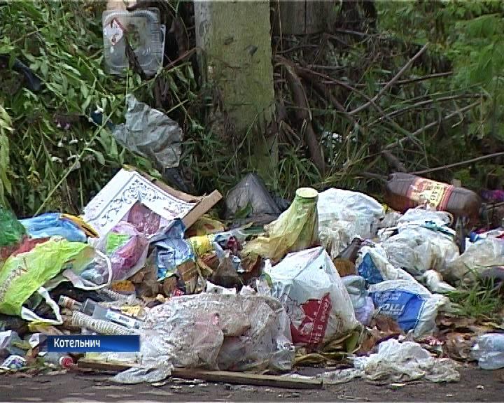 Жители Котельнича жалуются на нерегулярный вывоз бытовых отходов