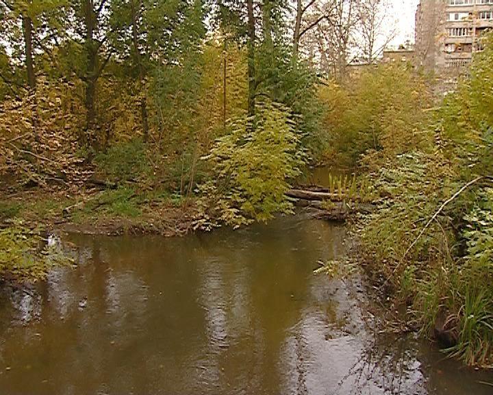 В Кирове появятся ленточные парки на базе малых рек