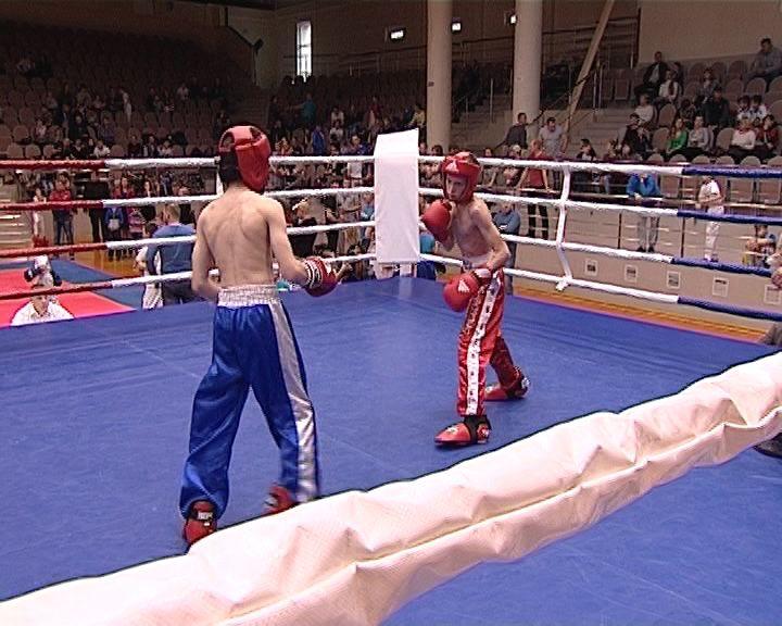 Кубок области по кикбоксингу во Дворце Единоборств