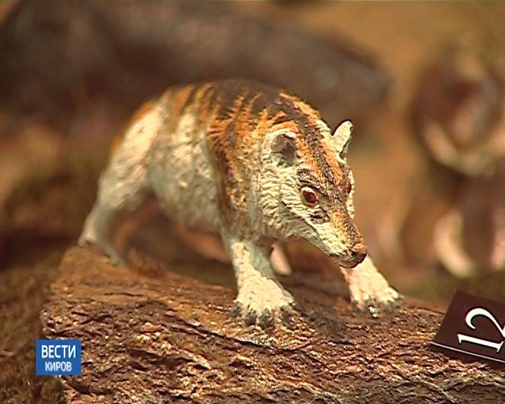 В палеонтологическом музее проходит выставка, посвященная эволюции