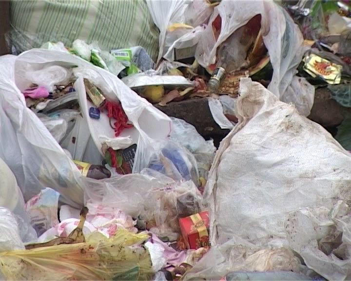 В Кирове растет количество несанкционированных свалок