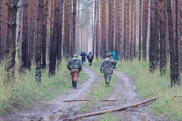 В Юрьянском районе нашли пропавшего без вести заготовителя грибов.