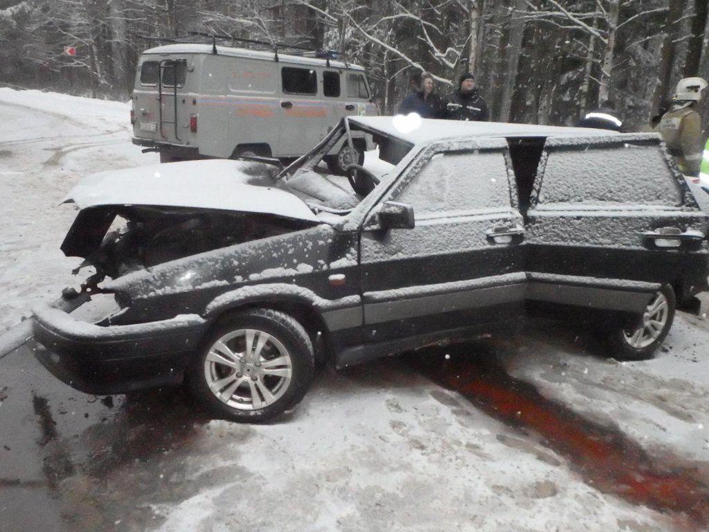 В Кирово-Чепецком районе в ДТП пострадали пять человек, в том числе 6-летний ребенок.