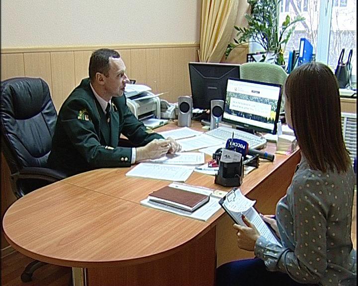 В областном правительстве подвели итоги работы новой информационной геосистемы ГИС-Лес