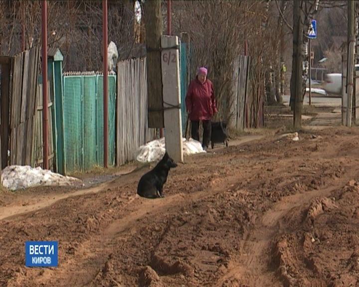 Кировчане жалуются на плохие дороги