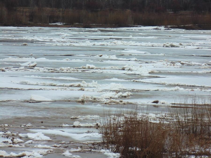 Уровень воды в реке Вятке снизился на 5 сантиметров.