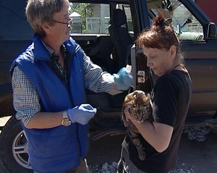 Вакцинации домашних собак и кошек от бешенства в заречной части Кирова