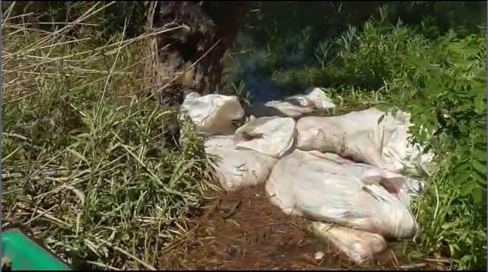 В Лебяжском районе на берегу Вятки нашли 25 тонн аммиачной селитры.