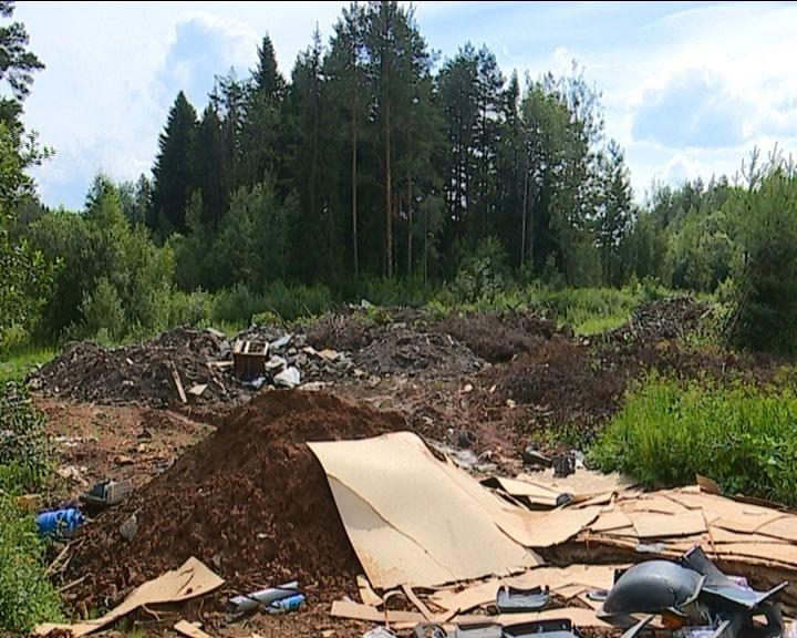 Свалка на земельном участке в Нововятском районе