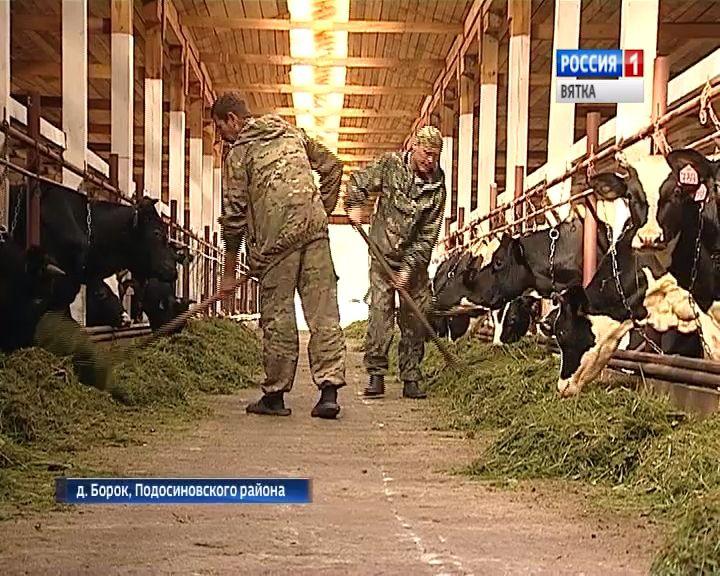 В Подосиновском районе запустили новую молочно-товарную ферму