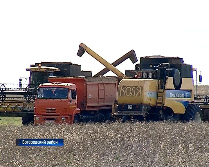В Куменском районе началась уборка рапса
