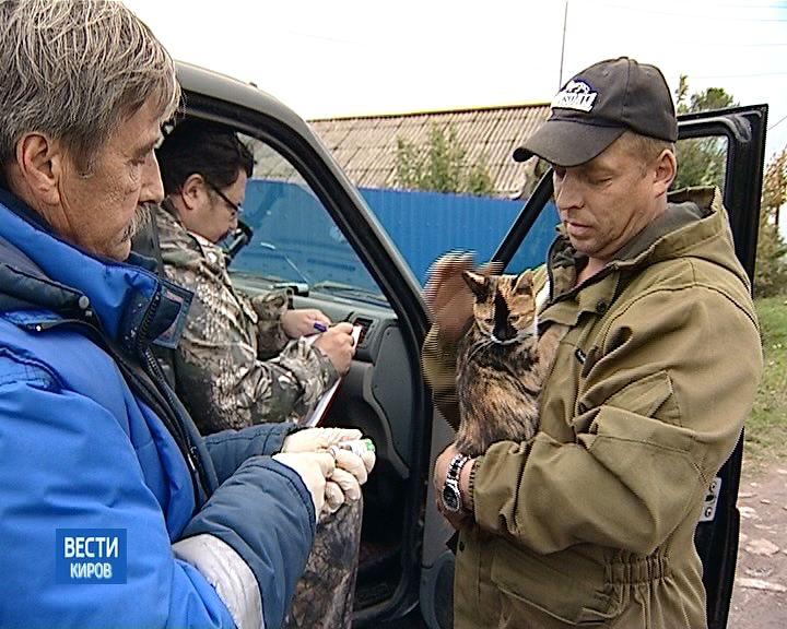 В Кирове стартовала кампания по вакцинации домашних животных против бешенства