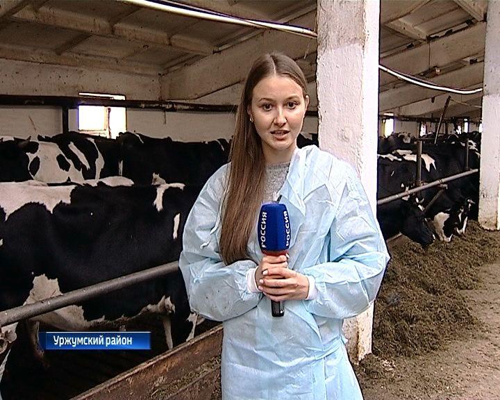 Строительство семенного завода и родильного отделения для крупного рогатого скота в Уржумском районе