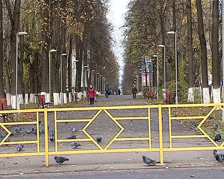 Зачем перегородили центральную аллею на Октябрьском проспекте?
