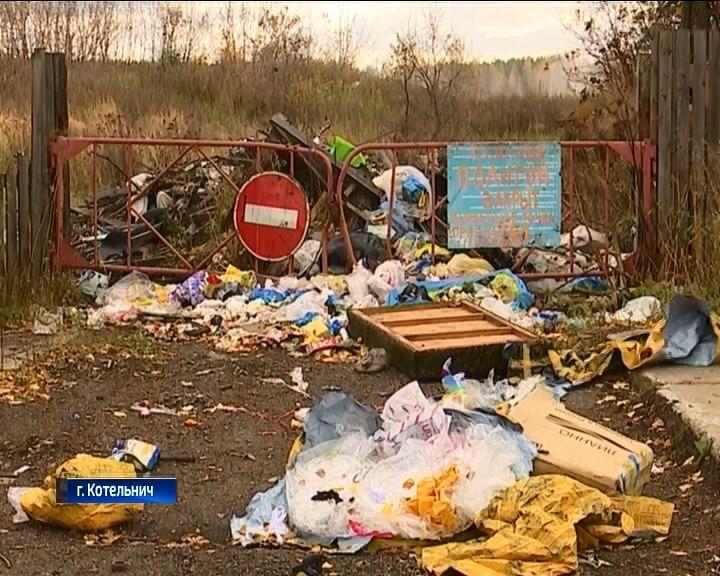 В Котельниче в некоторых районах отходы ТБО не вывозят уже полмесяца