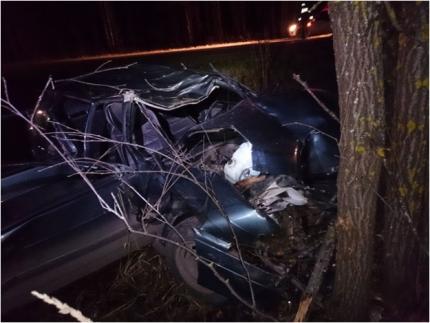 В Советском районе ВАЗ-2114 сбил лося: пострадали 3 человека.