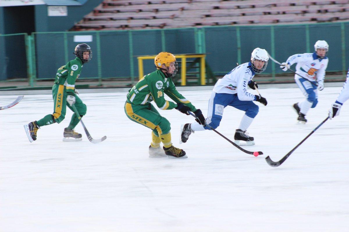 Юные игроки «Родины» стали победителями турнира на призы Федерации хоккея мячом.
