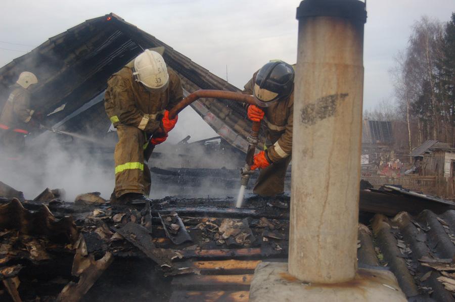 В Уржумском районе пожарные спасли из горящей фермы две сотни телят.