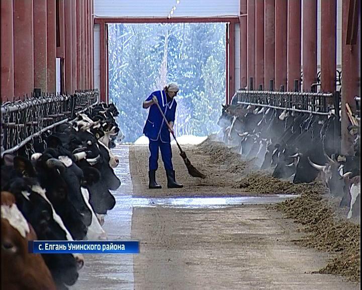 В селе Елгань Унинского района открыли новый животноводческий комплекс
