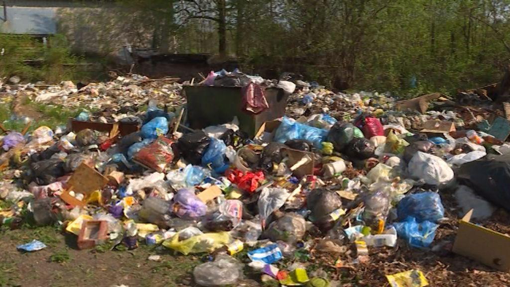 Котельничский Затон буквально утонул в мусоре