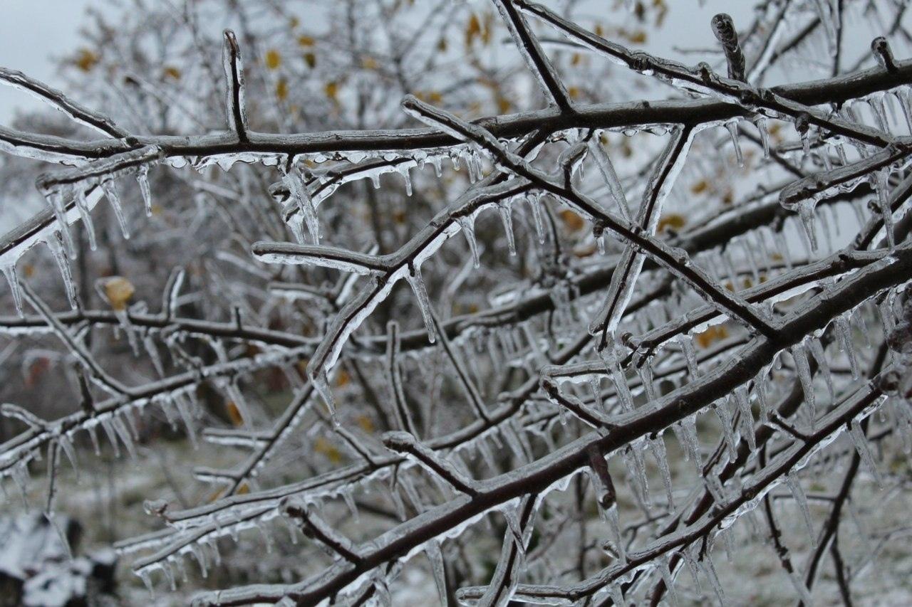 В Кировской области ожидаются ледяные дожди.