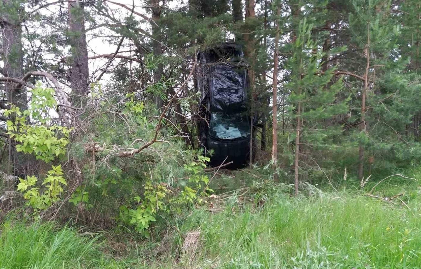 В Санчурском районе иномарка повисла в деревьях.