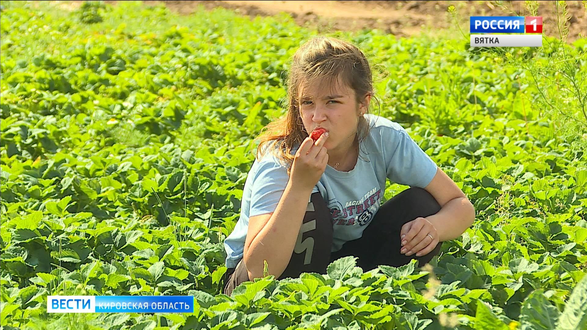 В Кирове стартовала летняя кампания по трудоустройству подростков
