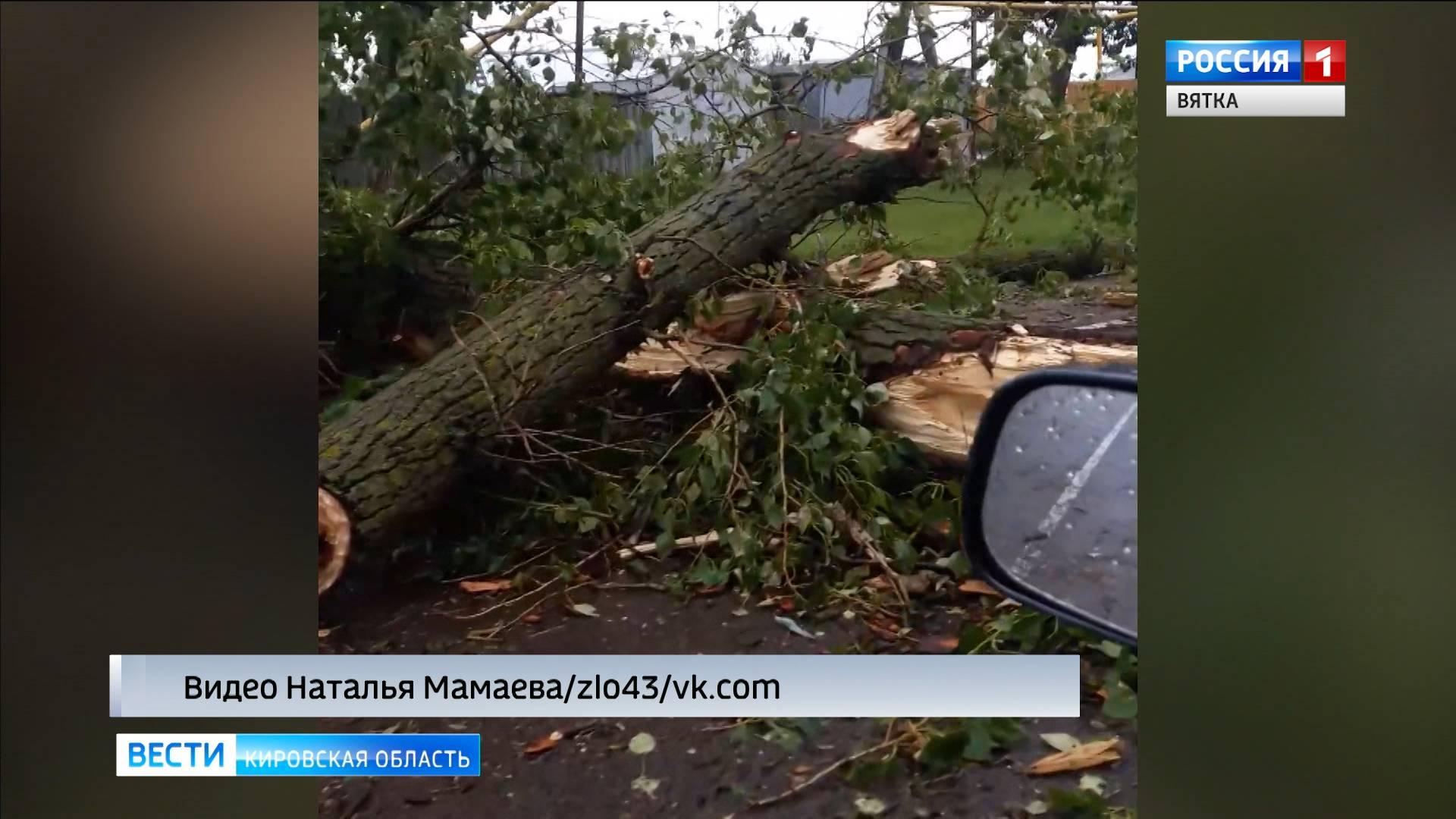 В селе Русском во время грозы повалило деревья