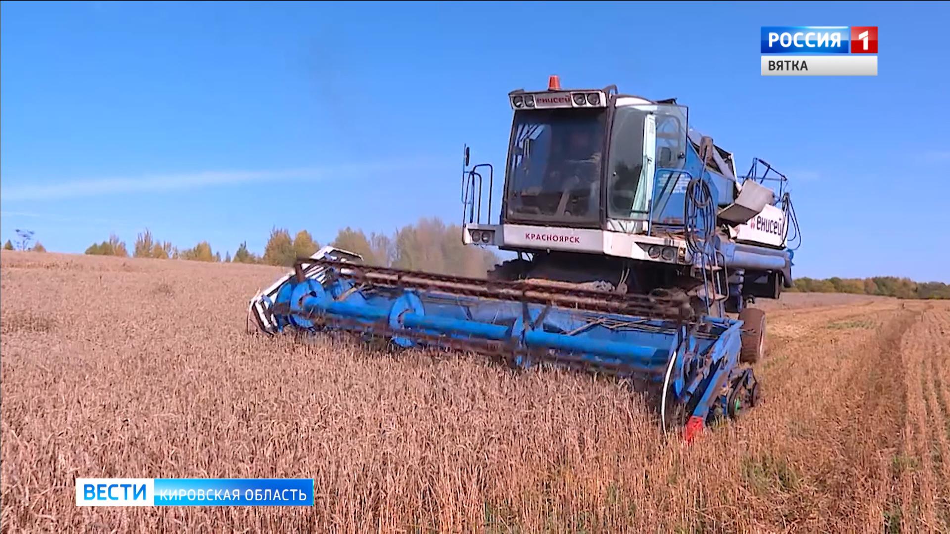 В Кировской области завершили уборку зерновых и зернобобовых