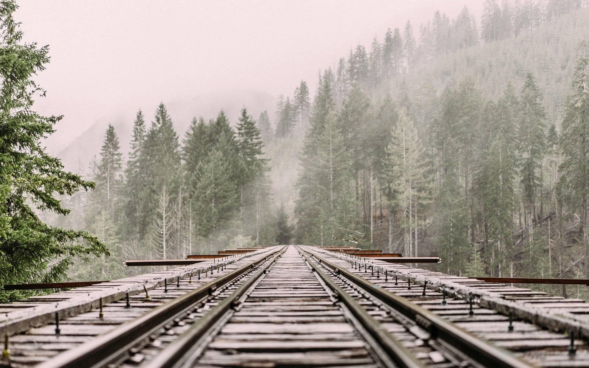 В Кировской области в 2020 году на железнодорожных путях погибли 16 человек