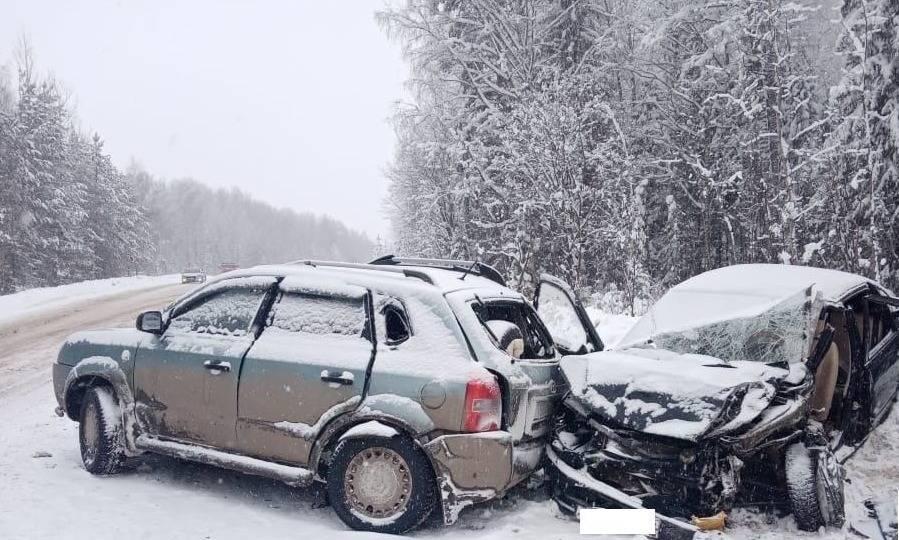 В Верхошижемском районе в ДТП погиб водитель «Лады»